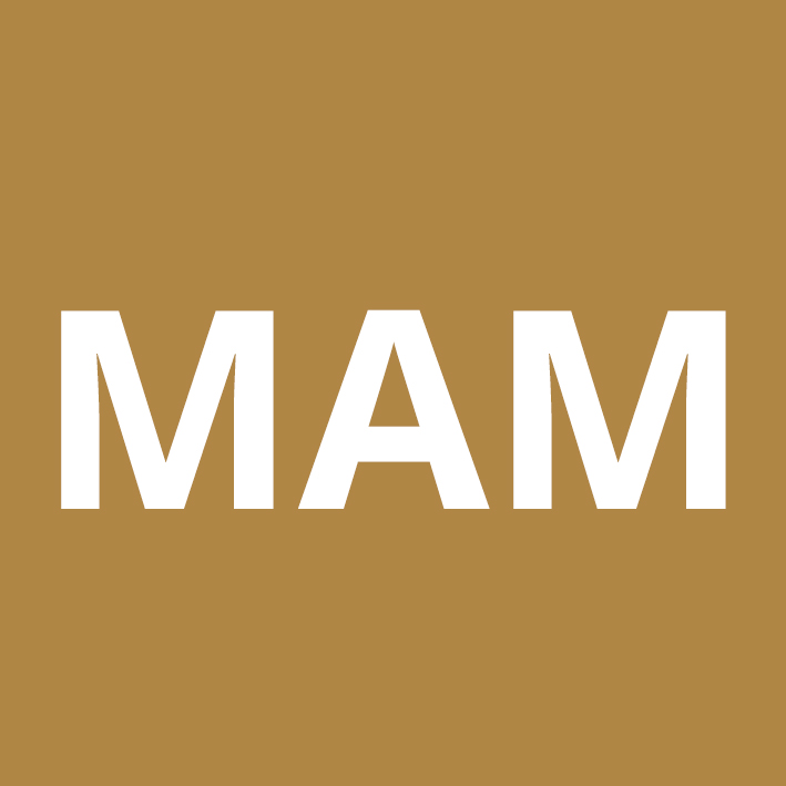 MAM - Mail Application Management Implementation Training